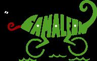 Club Triatlón Camaleón